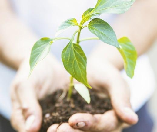 Alaturi de noi, protejezi mediul inconjurator